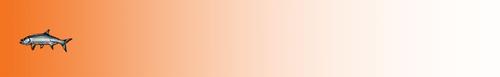 Arrow Wraps-Cole Brockway-2021-14