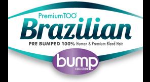 logo-premiumtoobump.png