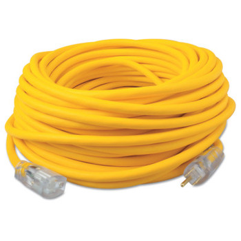 CCI RoyalFlex UL Extension Cord, 100 ft, 1 Outlet (1 EA/EA)
