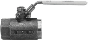 Dixon Valve Ball Valves, 1/2 in (NPT) Inlet, Female/Female, Stainless Steel (1 EA/PA)