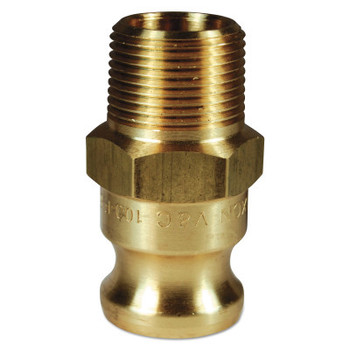 Dixon Valve Andrews/Boss-Lock Type F Cam and Groove Adapters, 1/2 in (NPT) Male, Brass (10 BOX/EA)