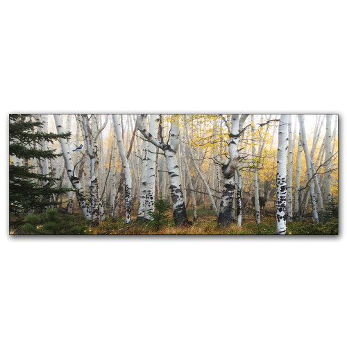 Morning Treescape Personalized Wall Art