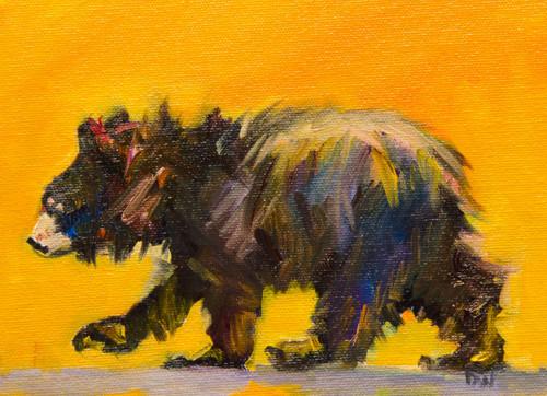 Walking Bear Canvas with Block Edges