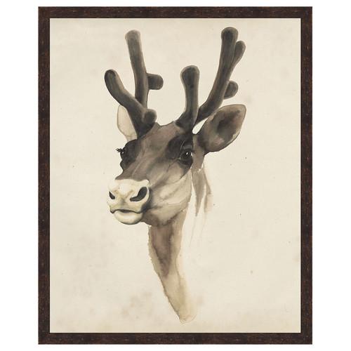 Watercolor Animal Study III Framed Print