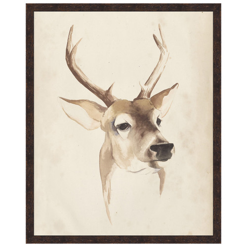 Watercolor Animal Study IV Framed Print