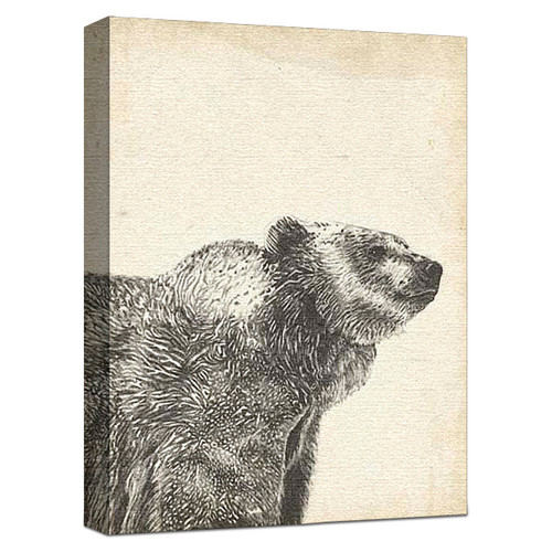 Wildlife Snapshot Grizzly Gallery Wrapped Canvas