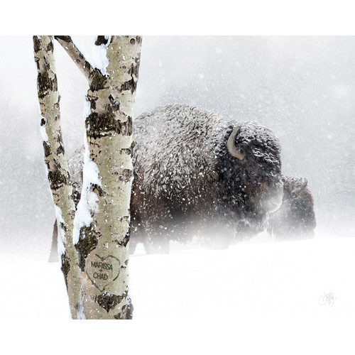Snow Bison Personalized Block Mount - 20 x 16