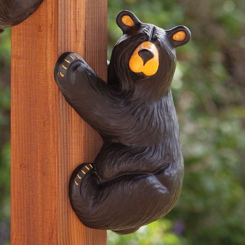 Righty Climbing Black Bear