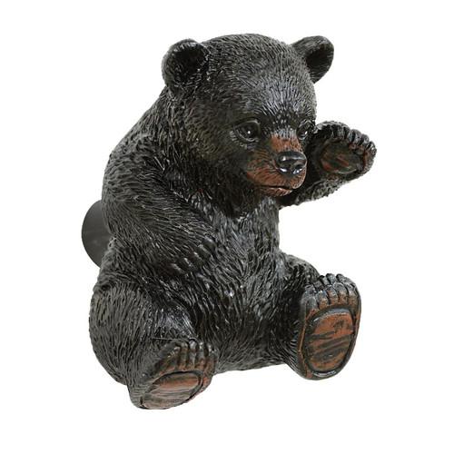 Curious Black Bear Cabinet Knob
