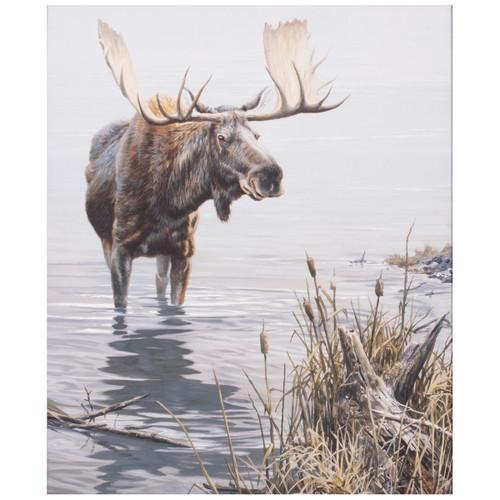 Drinking Moose Canvas Art
