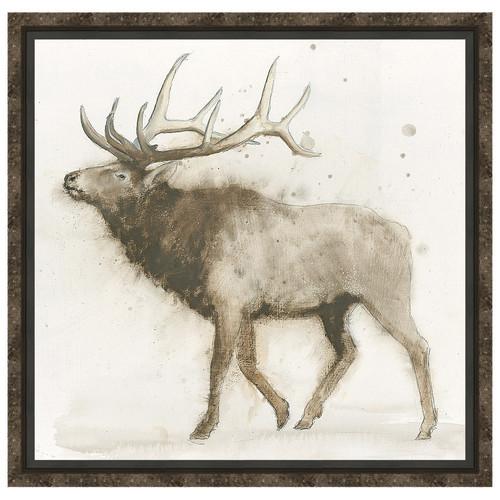 Elk 2 Framed Canvas