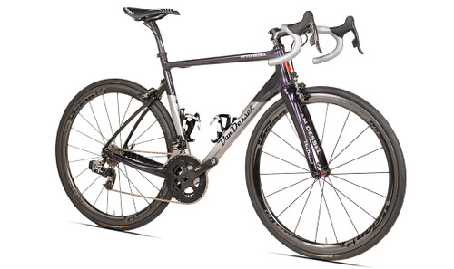 Van Dessel Motivus Maximus Disc Campagnolo Ergo equipped Carbon Bicycle, Silver / Black / Purple - Build It Your Way