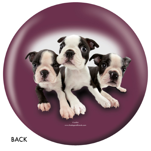 OTBB Boston Terrier Bowling Ball