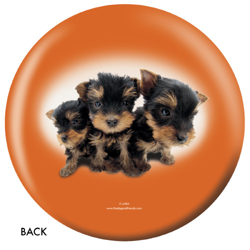 OTBB Yorkshire Terrier Bowling Ball