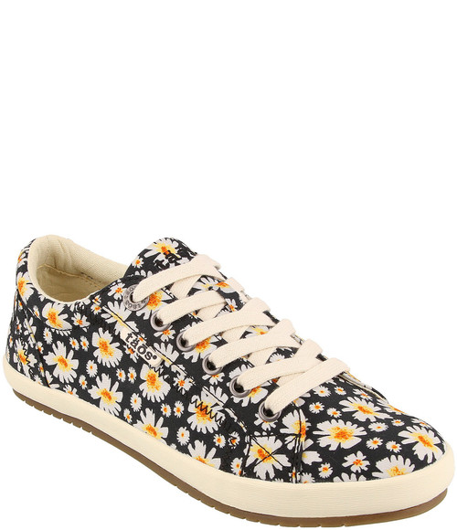 Taos Star Canvas Black Daisy