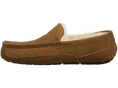 Ugg Ascot Men's Slipper Chestnut Suede