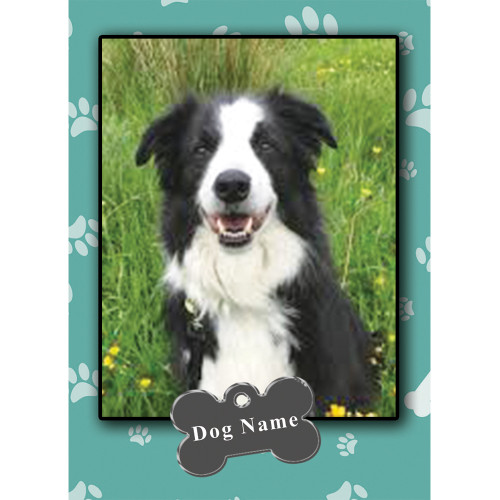 Custom Dog Trading Cards #3