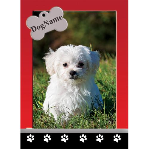 Custom Dog Trading Cards #9