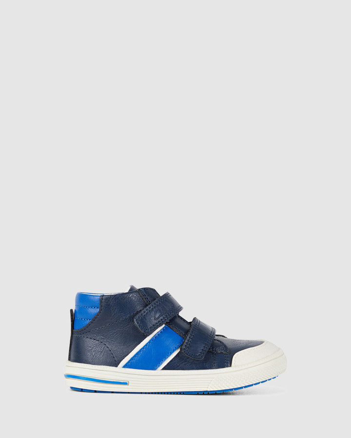 Shoes and Sox Bobby Navy/Cobalt