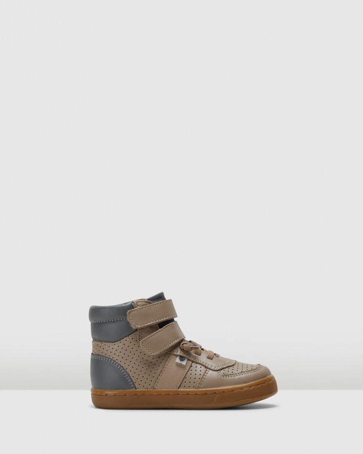 Shoes and Sox Top Louis B Taupe/Grey