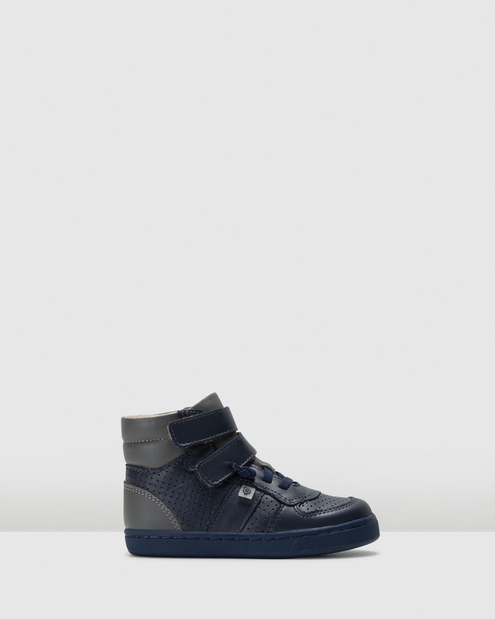 Shoes and Sox Top Louis B Navy/Grey