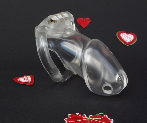 HolyTrainer Male Chastity Standard - Clear