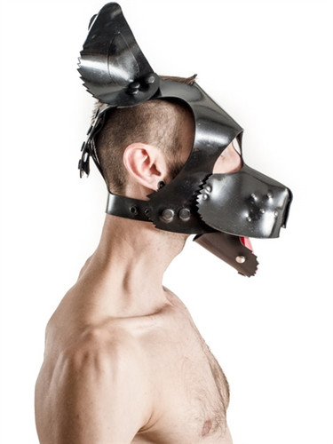 Mister B FETCH Rubber Dog Hood