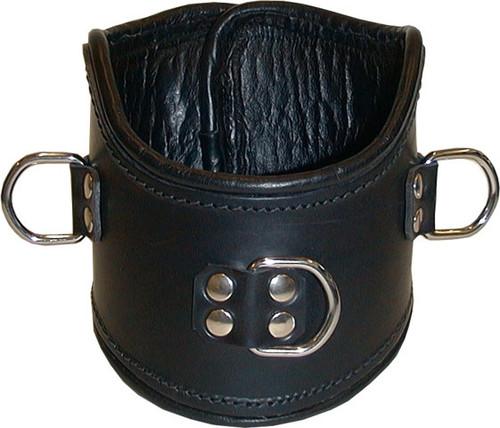 Leather Posture Collar