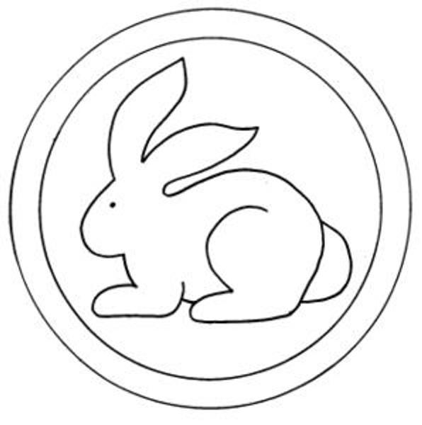 Allie's Rabbit