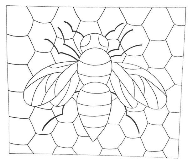 Honey Comb Bee