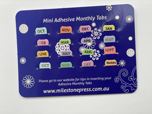 Mini Monthly Adhesive Tabs - Pastel with Silver Months