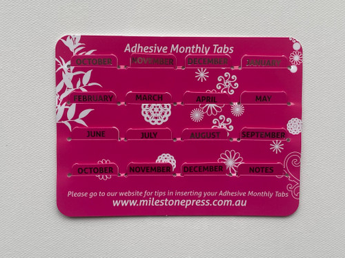 Monthly Adhesive Tabs - Pink with Silver Months