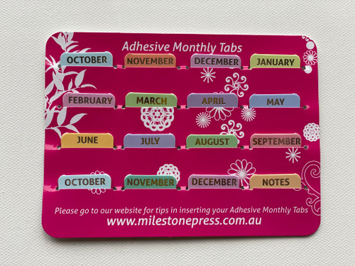 Monthly Adhesive Tabs - Pastel with Silver Months