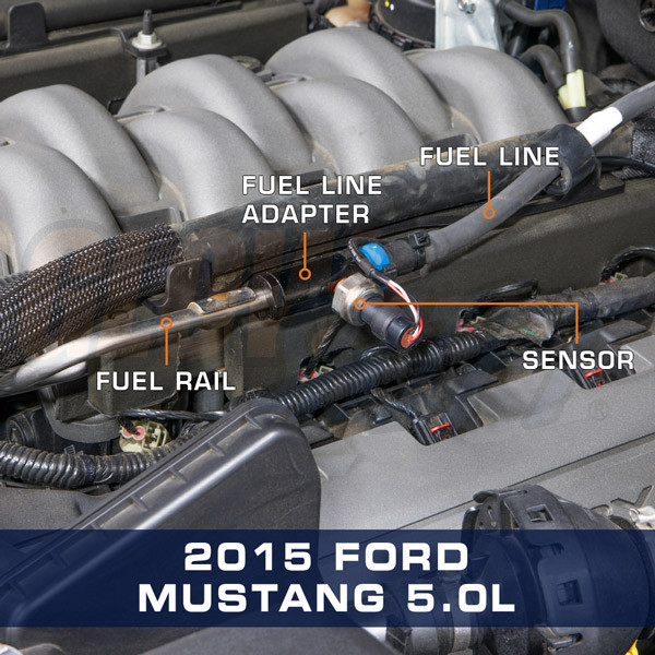 """3/8"""" Quick-Connect EFI Fuel Line Adapter Installed to 2015 Ford Mustang 5.0L"""