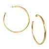 "Sheila Fajl 2.5"" Champagne Everybody's Favorite Hoops │HandPicked"