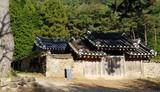 A Tea Trip to South Korea