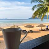 Smart Tea Choices for Hot Summer Days
