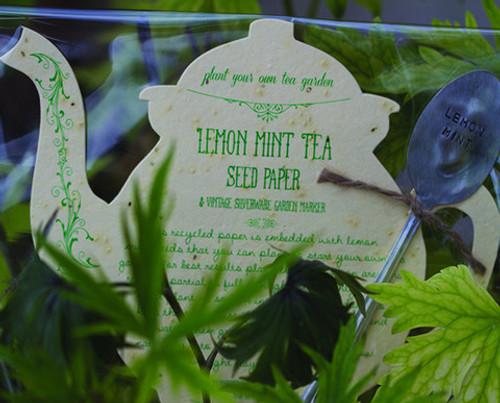 Lemon Mint Tea Seed Kit (Original Price $15.50)