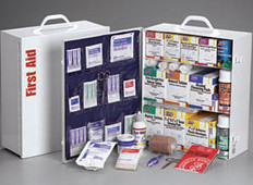 3-Shelf, 1041-Piece Industrial First Aid Station (With 12 Pocket Blue Vinyl Liner)