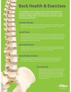 Back Health & Exercises Safety Poster (18 by 24 inch)