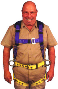 WorkMaster Harness (Three D-ring)
