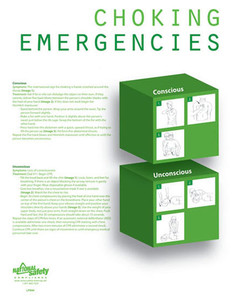 Choking Emergency Poster (18 by 24 inch)