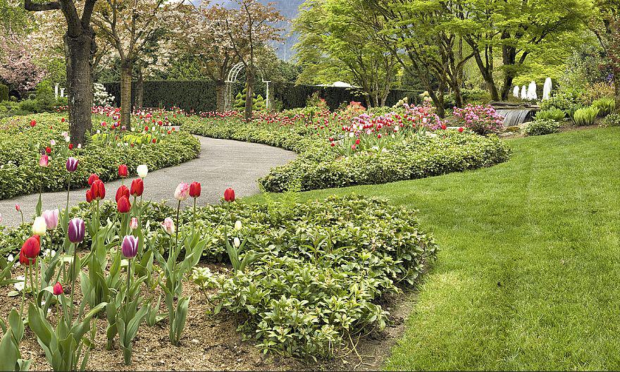 garden-to-try1.jpg