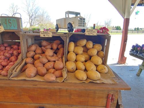 Sweet Potatoes - Loudounberry