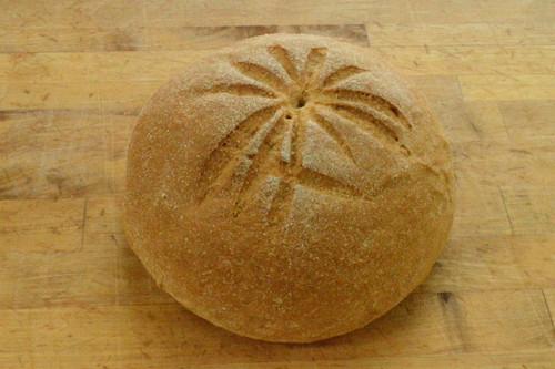 Honey Whole Wheat - Great Harvest Bread Herndon