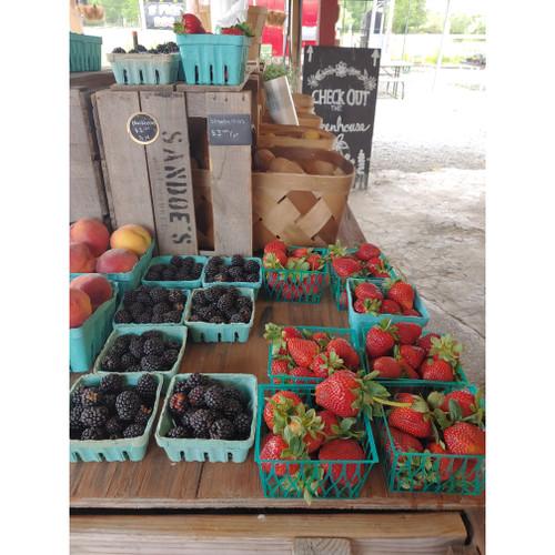 Blackberries - Loudounberry