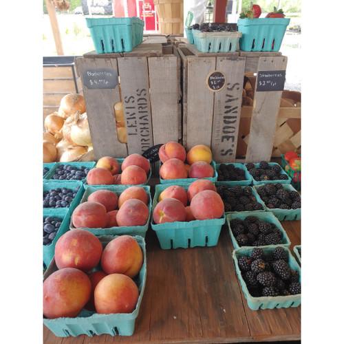 Peaches - Loudounberry