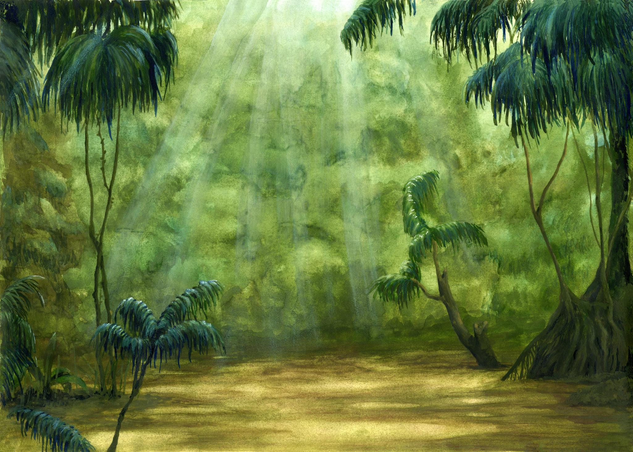 ancientrainforest.jpg