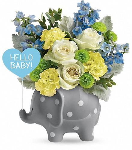 New baby boy, elephant, blue flowers