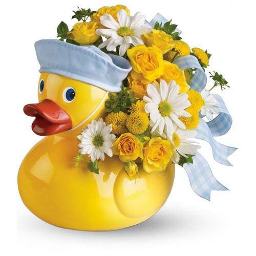 Ducky Delight - Boy